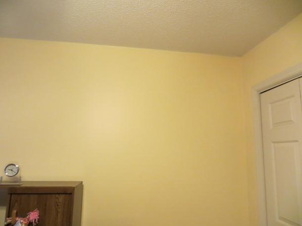 paint project 003