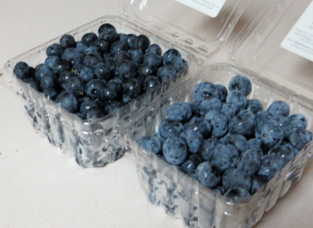 bread and blueberries 006