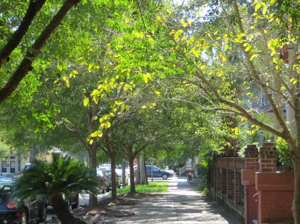 Street View of Savannah, Georgia  September  2013