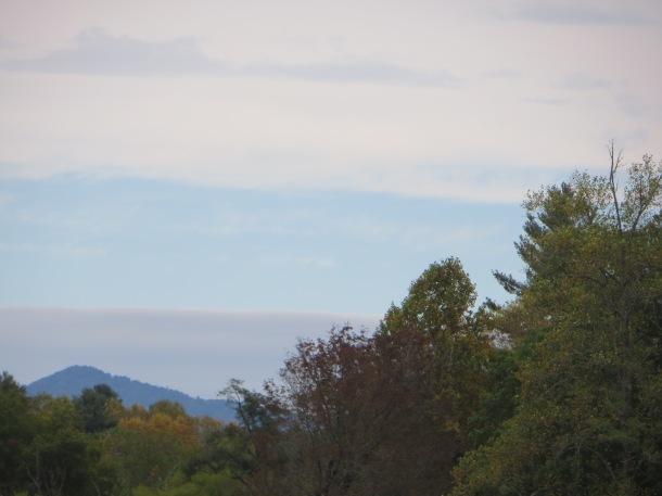 Brevard Mountain View