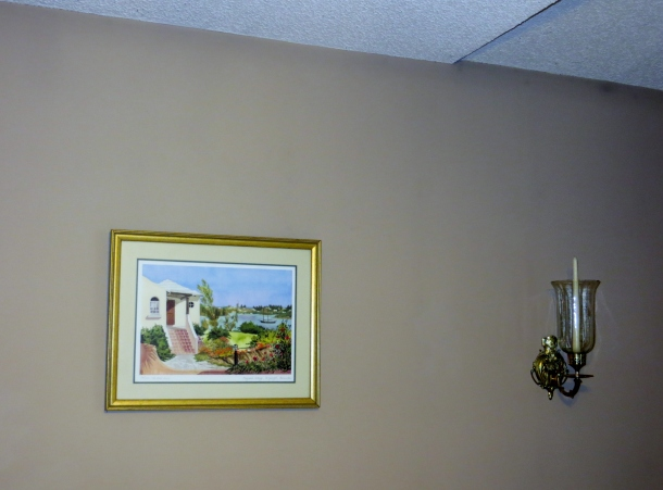 Beige Color of Walls Before Painting