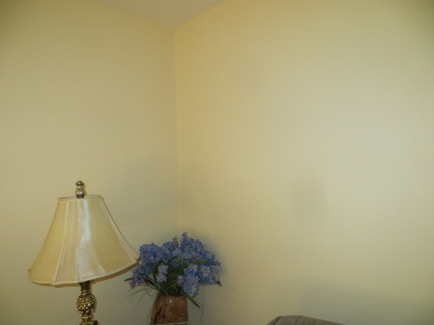 Corner of the living room - Color is Stable Hay by Behr