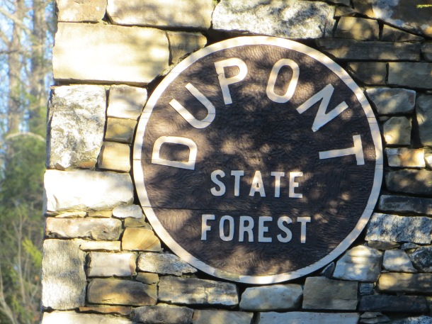 Sign at entry of Dupont State Forest