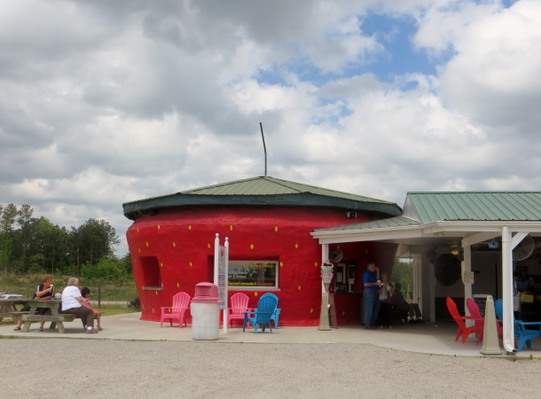 The Ice Cream Shop at the Berry Patch